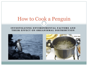 How to Cook a Penguin2