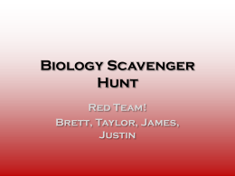 Biology Scavenger Hunt
