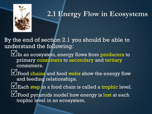 2.1 Energy Flow in Ecosystems