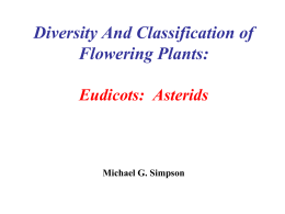Diversity And Classification of Flowering Plants: Eudicots: Asterids