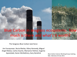 Blue Carbon in seagrass ecosystems