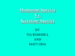 Dominant Species Vs. Keystone Species