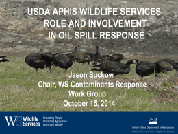 USDA APHIS Wildlife Services Role and Involvement in Oil Spill