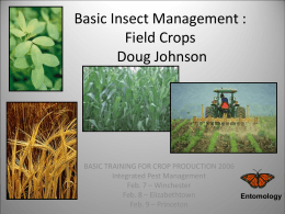 Basic Insect Management : Field Crops Doug Johnson