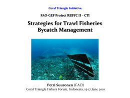 Coral Triangle Initiative FAO-GEF Project REBYC II – CTI Strategies