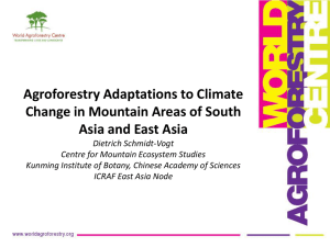 Agroforestry Adaptations to Climate Change in Mountain Areas