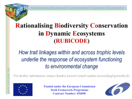 Traits and ecosystem services