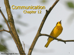 Complex Communication