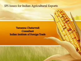 Tamanna Chaturvedi, Consultant, Indian Institute of Foreign Trade