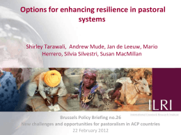 Options for enhancing resilience in pastoral systems