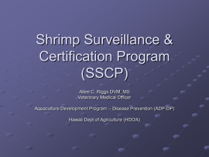 Shrimp Surveillance & Certification Program