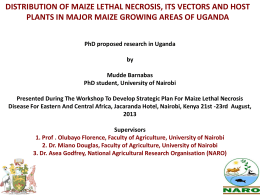 Distribution Of Maize Lethal Necrosis, Its Vectors And Host