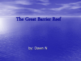 PowerPoint Presentation - The Great Barrier Reef
