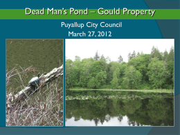 Dead Man`s Pond - City of Puyallup