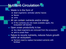Nutrient Circulation