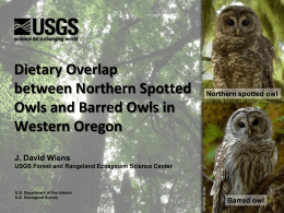 Barred compared to spotted Owl diets