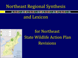 Northeast Regional Synthesis & Lexicon for State Wildlife Action