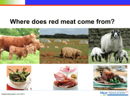 Where does red meat come from.