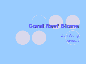 Coral Reef Biome - Lewiston School District