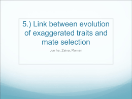 Q5 Evolution of exagerrated traits