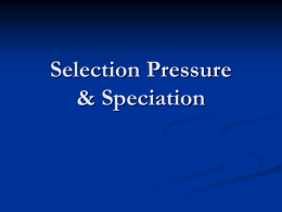 Selection Pressure & Speciation
