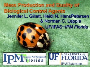 Mass Production and Quality of Biological Control Agents