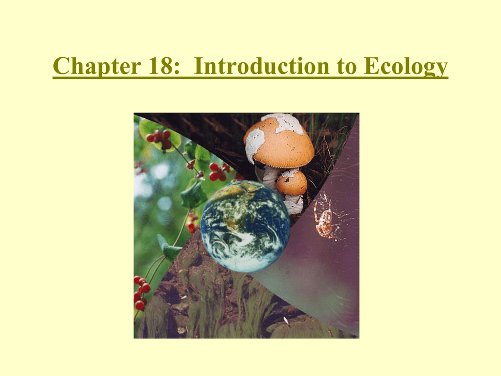 Chapter 35: Ecosystems