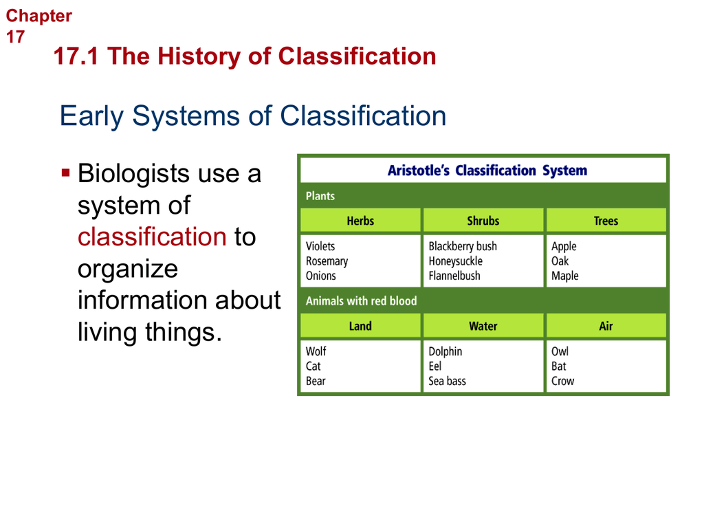 171 The History of Classification Chapter 17 – Section 18-2 Modern Evolutionary Classification Worksheet Answers