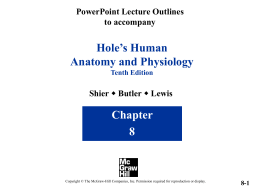 chapter 8 skeletal joints powerpoint