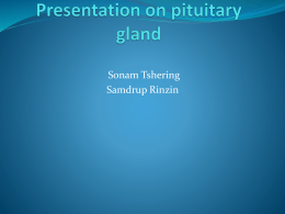 Presentation on pituitary gland