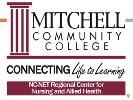 Prioritization of Nursing Care - NC-NET