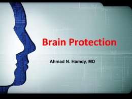 Brain Protection 12-03-2013 A.N.Hamdy