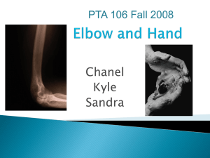 Elbow and Hand