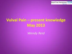 Vulval Pain Workshop March 20th 2011