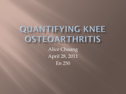 QuaNTIFYING KNEE OSTEOARTHRITIS: JOINT SPACE