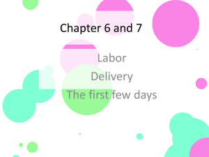 Chap 6-7 Labor and Delivery - Mrs. Patty Martin