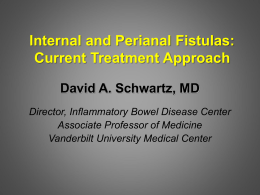 Internal and Perianal Fistulas - Advances in Inflammatory Bowel