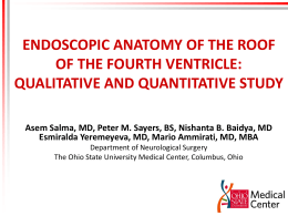 Endoscopic Anatomy of the roof of the fourth
