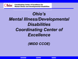Towards Best Practice in Dual Diagnosis: The Ohio Model