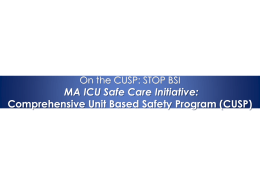 Project Report - Lean Sigma - Massachusetts Coalition for the