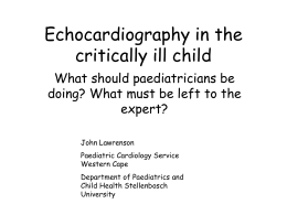 Echocardiography in the critically ill child
