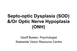 SEPTO-OPTIC DYSPLASIA - Statewide Vision Resource Centre