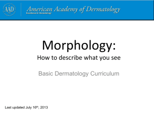Morphology - American Academy of Dermatology