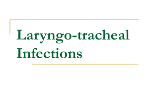 Laryngo-tracheal Infections