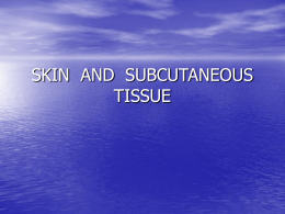 Skin and Subcutaneous Tissue