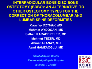INTERRADICULAR BONE-DISC