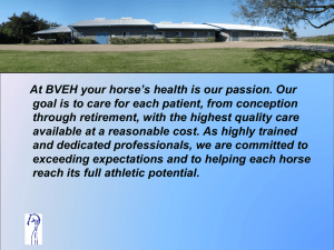 Colic  - Brazos Valley Equine Hospital