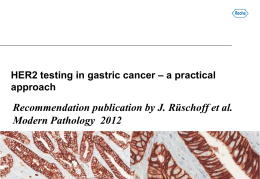 HER2 Testing in Gastric Cancer