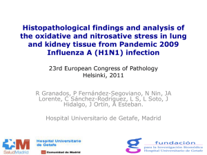 Histopathological findings and analysis of the oxidative and