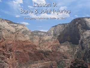 Lesson 9: Bone and Joint Injuries - Bsa